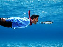 Seznamka s názvem ryby v moři