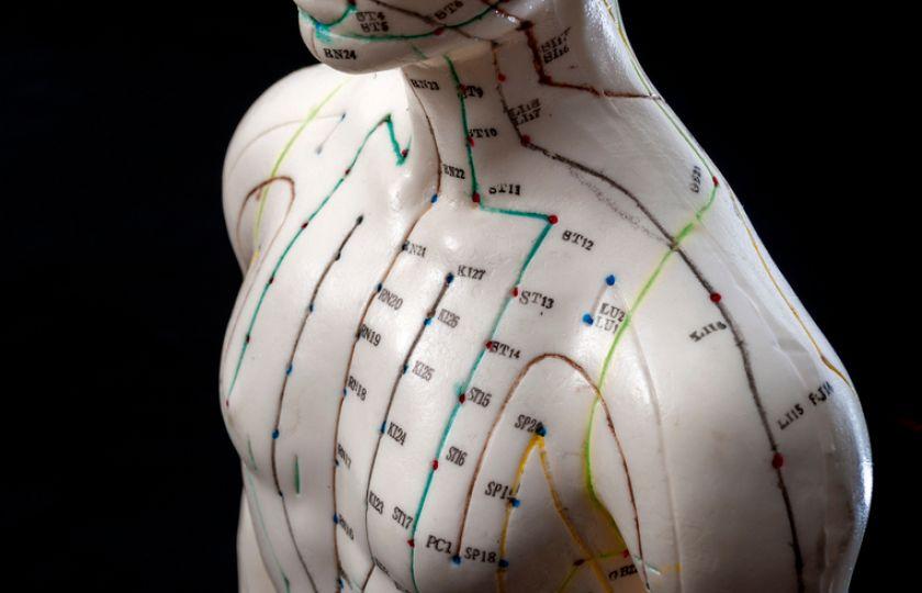 Věda potvrzuje podstatu tradiční medicíny: Tělem proudí energie