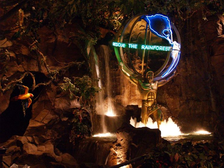 rainforest cafe2