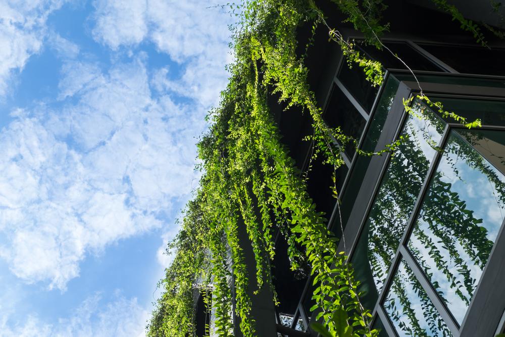 Živá architektura: Vznikají sídliště i města, která spolupracují s přírodou