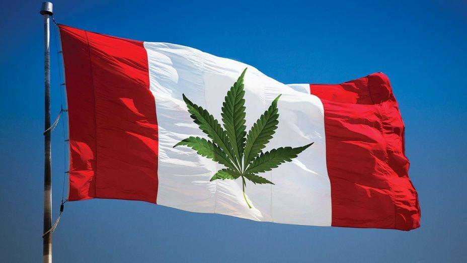 V Kanadě začíná konopná revoluce. Do legalizace zbývá měsíc