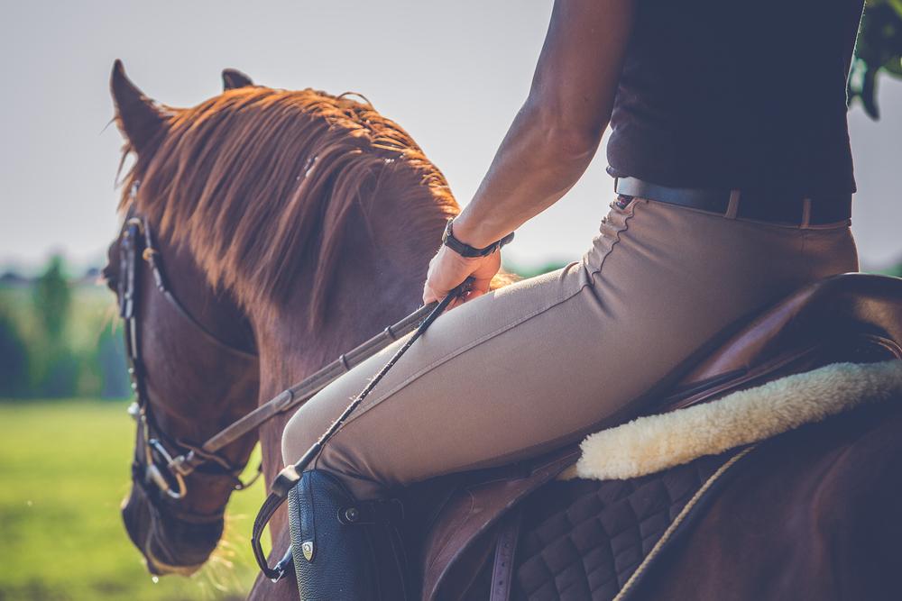 Jezděte na koni stylově. I luxusní oblečení lze pořídit se slevou
